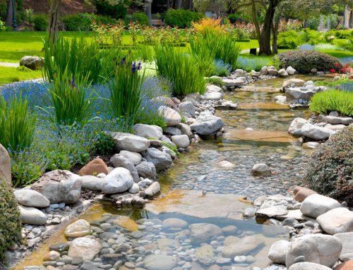 Botanical Garden Project
