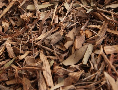 Natural Mulch