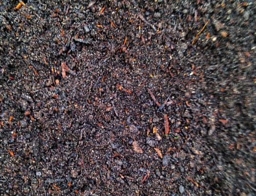Organic Aged Compost